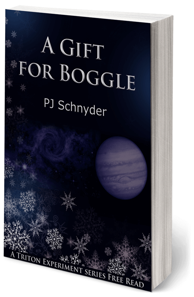 A Gift for Boggle by PJ Schnyder