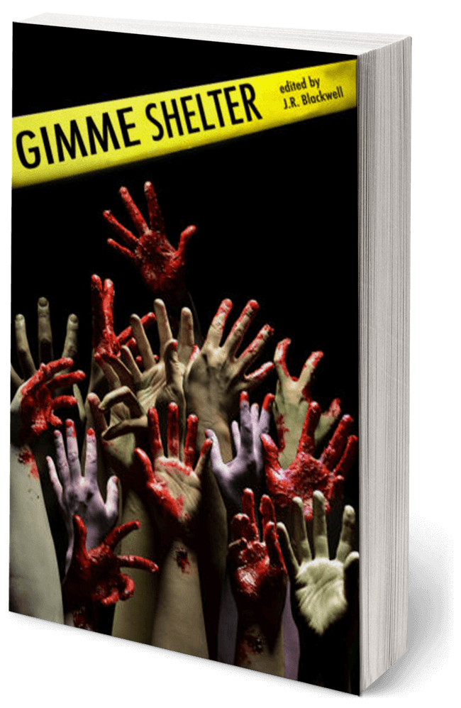 Gimme Shelter by PJ Schnyder